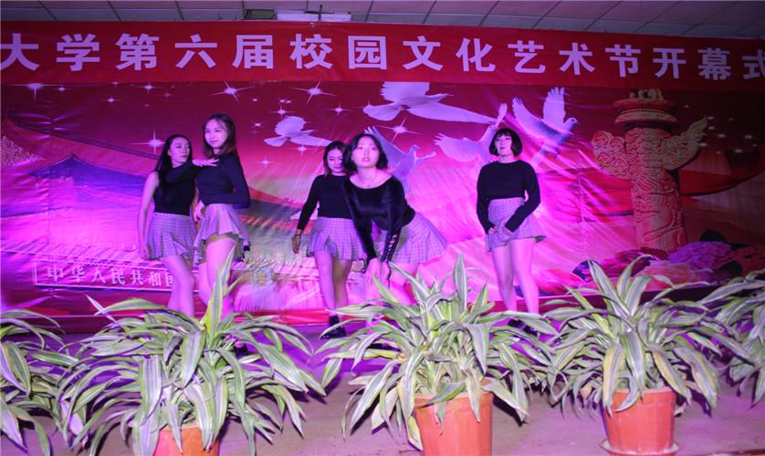 现代管理大学第六届文化艺术节开幕